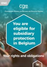 brochure subsidiary protection